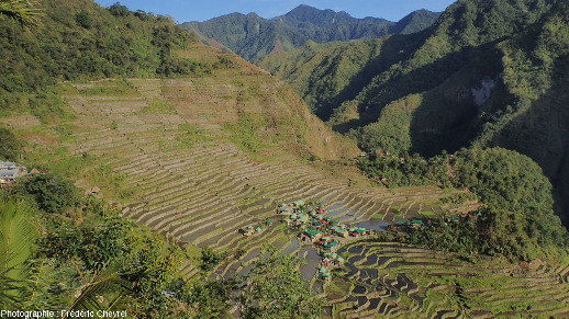 Rizières en terrasse établies sur des versants raides dans la région de Banaue (Philippines)