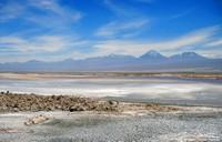 Un exemple de salar: le salar d'Atacama, Chili