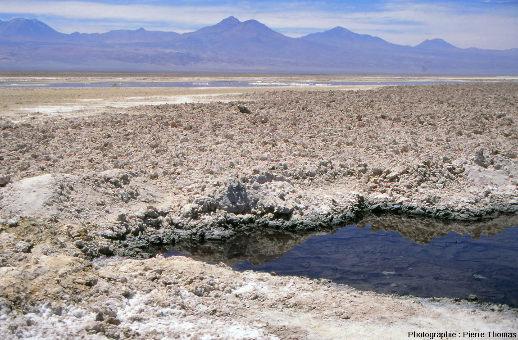 Mare et lac salés, croutes de sels, salar d'Atacama (Chili)