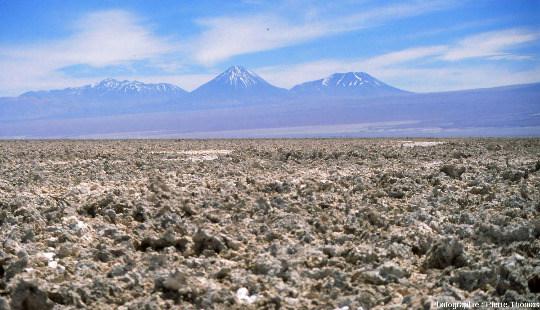 Croutes de sels avec le volacan Licancabur en fond, salar d'Atacama (Chili)