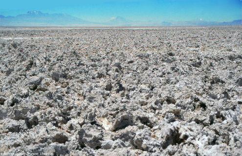 Croute de sels, salar d'Atacama (Chili)