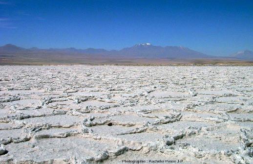 Croute de sels à surface polygonale, salar d'Atacama (Chili)