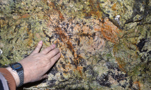 """Détails sur des pegmatites à """"petits"""" cristaux, de tailles comprises entre 1 et 10cm, Monts d'Ambazac (Haute-Vienne)"""