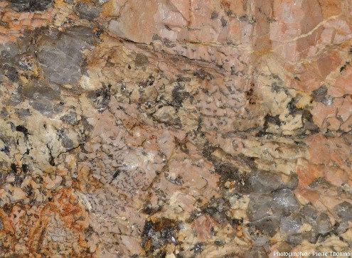 Détail de la pegmatite en bas du cristal géant de feldspath potassique englobé dans un cristal de quartz