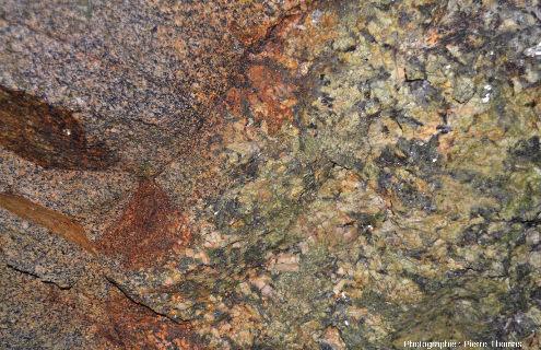 """Détail du contact entre un filon de pegmatite à cristaux """"ordinaires"""" (taille de 1 à 2cm) et le faciès classique du granite de Saint-Sylvestre (cristaux millimétriques)"""