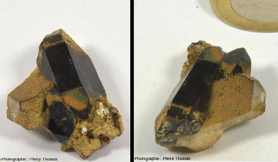 Vues avant et arrière d'un petit échantillon de pegmatite montrant la juxtaposition d'un cristal automorphe de quartz fumé et d'un cristal automorphe de feldspath