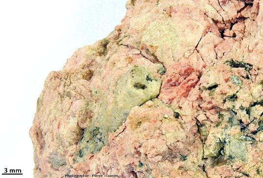 Cristaux verts de béryl, dont l'un montre sa belle forme de prisme à base hexagonale, inclus dans des cristaux roses de feldspath potassique, vers Ambazac (Haute-Vienne)