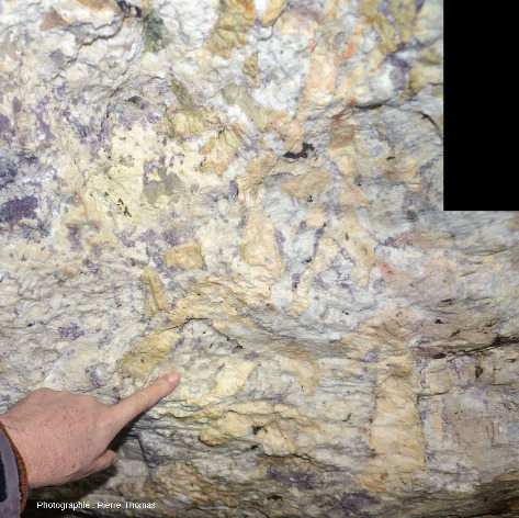 Paroi d'une galerie montrant une belle pegmatite à lépidolite et à gros feldspath (albite probable)