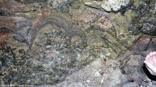 """Zoom sur des aplites litées ayant """"poussé"""" sous forme de dômes sur une pegmatite """"normale"""""""
