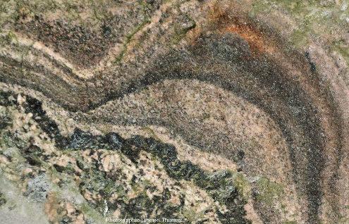 """Zoom sur des """"dômes"""" d'aplite litée ayant crû sur une pegmatite classique montrant ce qui ressemble à des structures de recoupement voire de granoclassement (ou de tri par densité)"""
