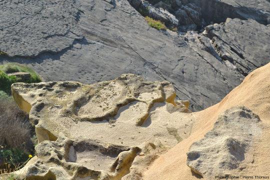 Vue de détail de thalassinoïdes, ichnofossiles contenus dans des grès de l'Éocène inférieur du Jaizkibel, Pays basque espagnol