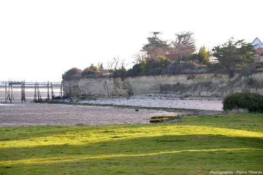 Zoom large sur la faille affectant le Crétacé supérieur (Cénomanien supérieur – Turonien basal) de la falaise de Port des barques (Charente Maritime), falaise bordée (à gauche) par l'estuaire de la Charente