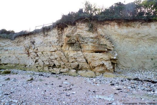 Vue d'ensemble sur la faille qui sépare un compartiment gréso-calcaire résistant à l'érosion d'un compartiment marno-sableux beaucoup moins résistant à l'érosion marine, Port des Barques (Charente Maritime)