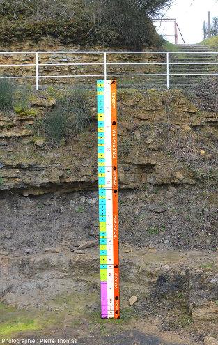 """Gros plan sur la """"règle"""" détaillant les différentes zones d'ammonites de la carrière du Rigollier (ou des Groies)"""