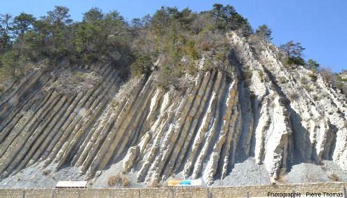 Détail de l'autre slump qui perturbent la régularité des alternances marno-calcaires de la coupe de la Charce
