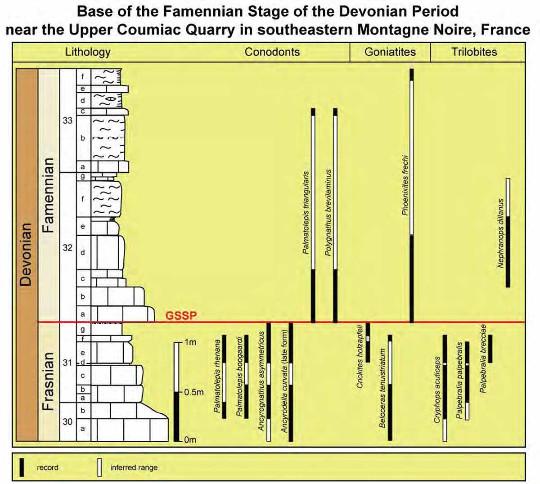 Stratigraphie détaillée du sommet du Frasnien et de la base du Famennien de la carrière de Coumiac (Hérault)
