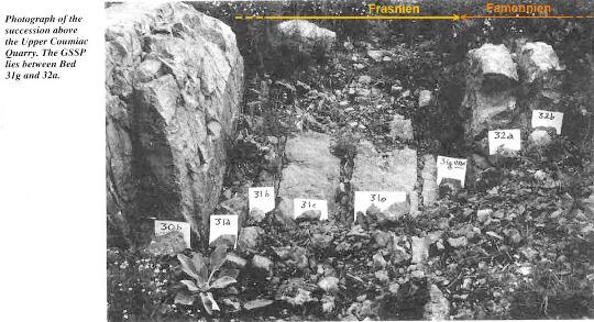 La limite Frasnien-Famennien photographiée avant 1993 en haut de la partie NE de la carrière de Coumiac (Hérault)