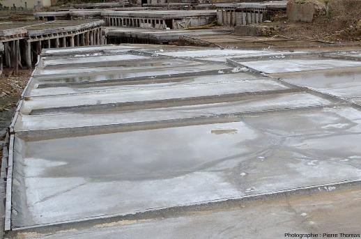 Gros plan sur des bassins en eau, partiellement évaporés et où se dépose du sel (en moyenne 20kg par bassin)