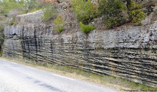 Au bord de la même route que les photos principales, 20m plus au Nord, près de Saumane de Vaucluse