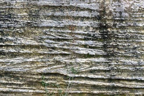 Vue de détail des stratifications obliques de la figure précédente, , près de Saumane de Vaucluse