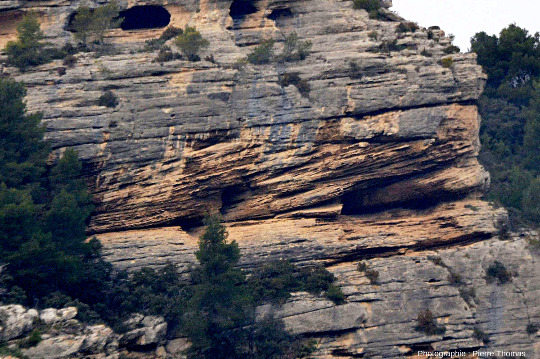 Détail d'une falaise de Burdigalien au Nord-Ouest de Fontaine de Vaucluse