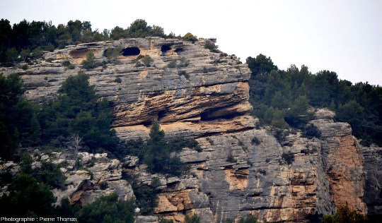 Vue rapprochée d'une falaise de Burdigalien au Nord-Ouest de Fontaine de Vaucluse