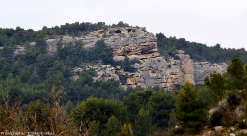 Une falaise de Burdigalien au Nord-Ouest de Fontaine de Vaucluse