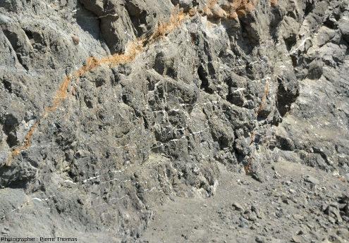 Paroi verticale de la carrière entaillée dans des brèches volcaniques et recoupée par de nombreux filons d'aragonites sub-horizontaux