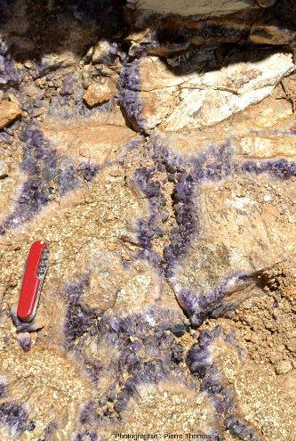 """Améthyste cimentant une """"brèche tectonique"""" à éléments de granite, Mine de Poux, Le Vernet-Chaméane, Puy-de-Dôme"""