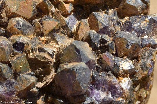 Zoom sur un échantillon d'améthyste bien cristallisée