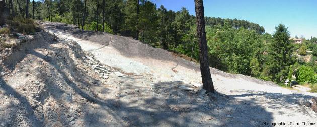 Vue d'ensemble de la majeure partie de la dalle à empreintes de dinosaures d'Ucel (Ardèche)