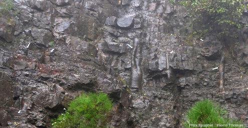 Vue du même secteur par une pluvieuse journée de novembre, la forêt fossile, Champclauson, La Grand'Combe, Gard