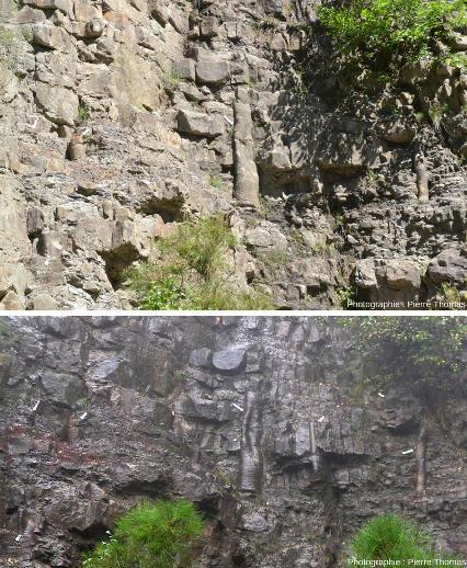 Comparaison entre une photo prise sous le soleil de mai 2019 avec une photo prise sous la pluie en novembre 2018, la forêt fossile, Champclauson, La Grand'Combe, Gard