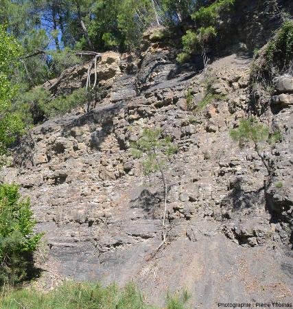 Image de la paroi de la tranchée de Champclauson (Gard)