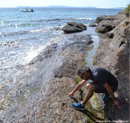 Zoom arrière sur les micaschistes à staurotide de la plage du Rayol, Var