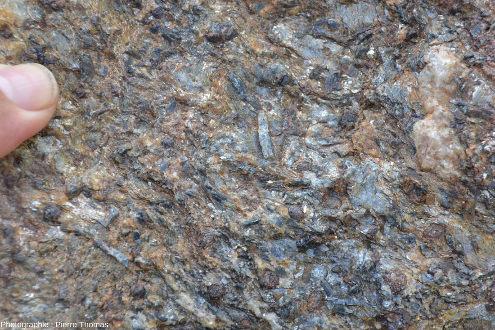 Zoom sur un échantillon de micaschiste des Maures, La Mole (Var)
