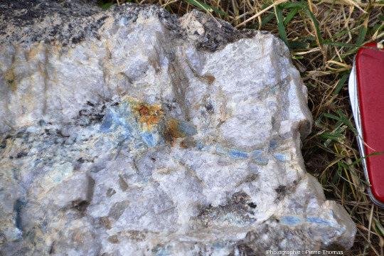 Lentille de quartz à disthène au sein de micaschistes, Le Lavandou (Var)