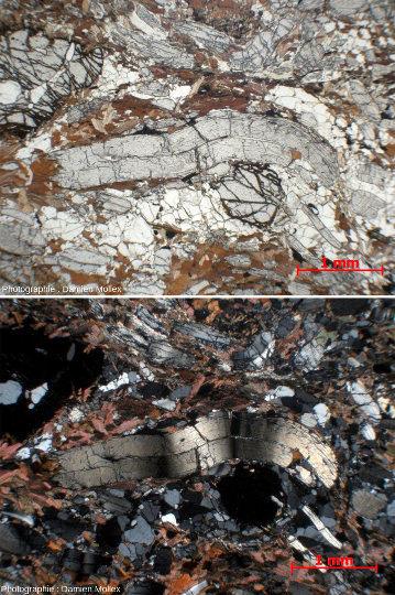Lame mince (LPNA, en haut, et LPA, en bas) d'un disthène millimétrique déformé avec une belle extinction roulante visible en LPA