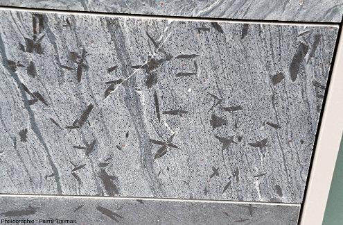 Dalle de micaschiste décorant la façade de la Maison des Avocats de Lyon