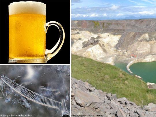 Bière, frustule de diatomée, diatomite… un lien insoupçonné