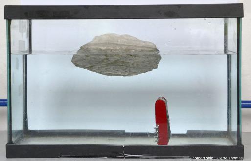 La diatomite est une roche très poreuse et qui flotte