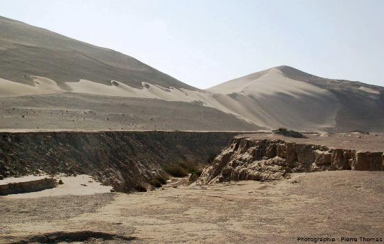 Partie Sud-Sud-Est du champ de barkhanes des photos précédentes qui sont située environ 200m au-delà de la limite gauche de la photo