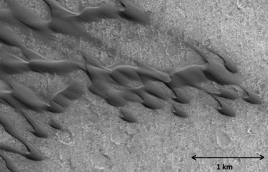Les barkhanes n'existent pas que sur Terre, mais aussi sur Mars car la mécanique des fluides est un processus universel