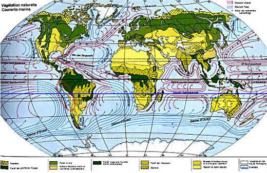 Carte des courants marins et des grands types d'écosystèmes végétaux