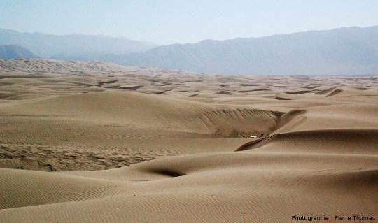 Champ de dunes de type barkhanoïde, intermédiaires entre des dunes classiques et des barkhanes, Pérou