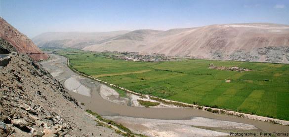Vallée verdoyante de la côte pacifique du Pérou, vallée irriguée par un fleuve (le rio Ocoña) dont l'eau vient des neiges de la Cordillère des Andes