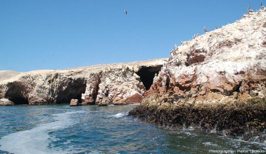 Vue sur la côte de la plus au Nord des iles Ballestas (Pérou)