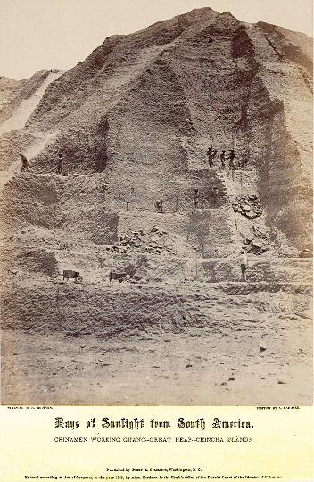 Vue de travailleurs (surtout chinois) exploitant le guano de Great Heap (le Grand Tas), îles Chincha, en 1865
