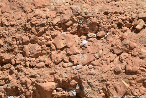 Gros plan sur les éléments du conglomérat, éléments de taille décimétrique, et constitués de blocs parfois arrondis, souvent relativement anguleux