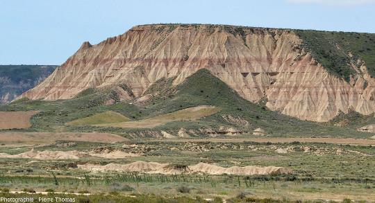 Vue d'ensemble d'une cuesta ciselée par ce type d'érosion en badlands, Bardenas Reales, Navarre espagnole